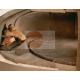 FORNO ROTANTE A LEGNA - PIANO MONOBLOCCO ROTANTE - CAPACITA' 10/12 PIZZE - DIMENSIONI CM L215 X P180 X H190
